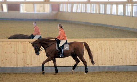 dressage training for soundness