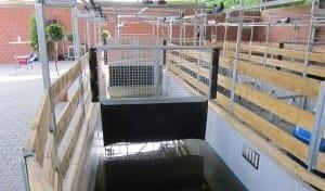 horse water treadmill empty