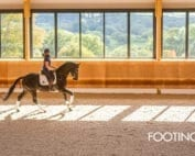 horse arena footing 101