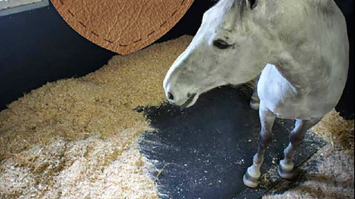 SoftBed Comfort Mat in Stall