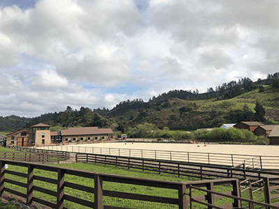 Completed equestrian arena