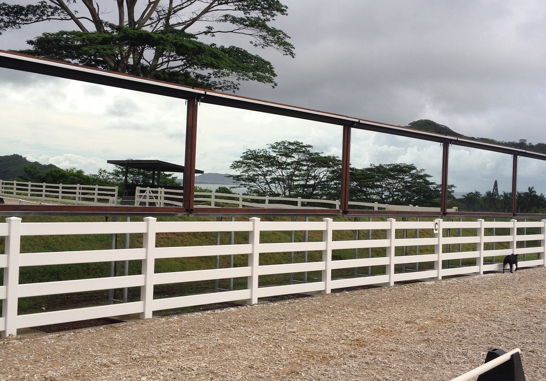 Outdoor ridind arena mirrors