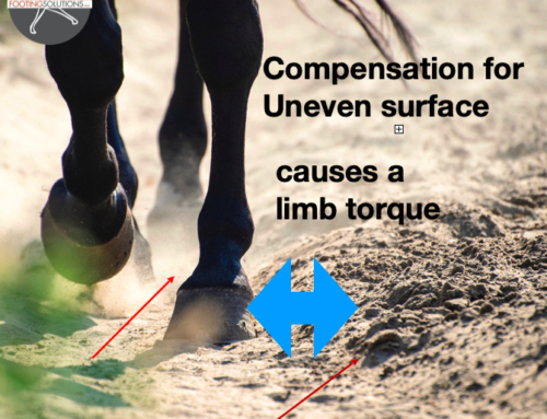 Soundness, Performance, and Your Horse Part 2: Uneven Arena Footing