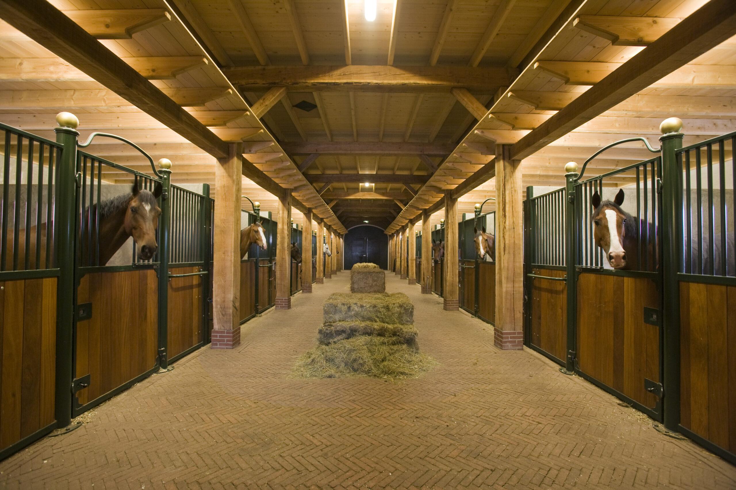 Horse Stalls USA